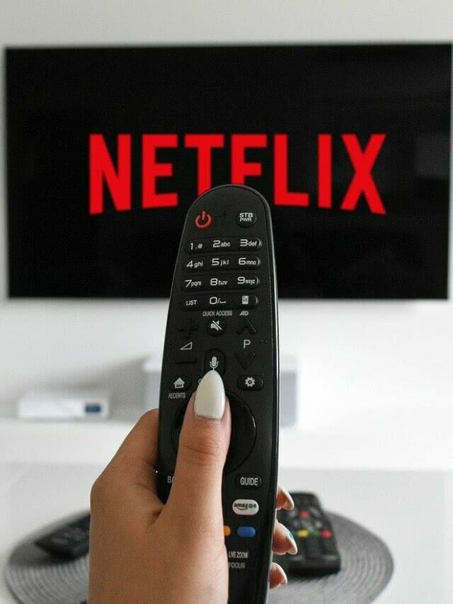 Como a Netflix ganha dinheiro?